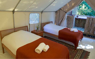 Luxury Safari Tent-Double Occupancy